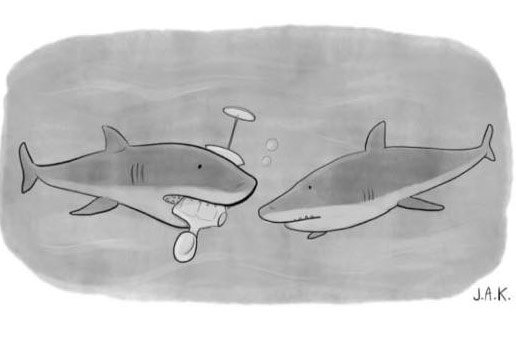NYT shark cartoon